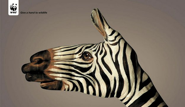 Best Marketing Strategies - A hand painted to look like a zebra